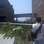 A High Line View